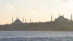 Blå moskén till vänster och Hagia Sofia till höger