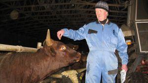 Den har öronlapparna i båhåll och behöver inte destrueras konstaterar bonden Lars Smeds
