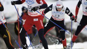 Världscupen på skidor