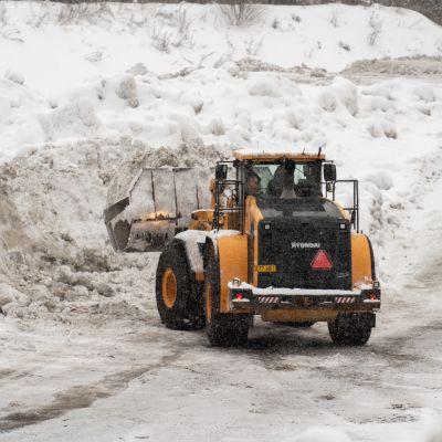 Pyörökuormaaja tekee lumitöitä Aarikkalan lumenvastaanottopaikalla Tampereella.