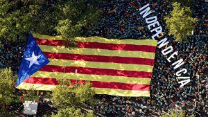 Demonstration i Barcelona 11.9.2019