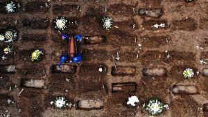 Bild tagen med drönare på en gravgård där coronadödsoffer begravs av personer i skyddsutrustning.