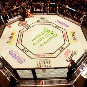 McGregor mot Nurmagomedov vid UFC229.