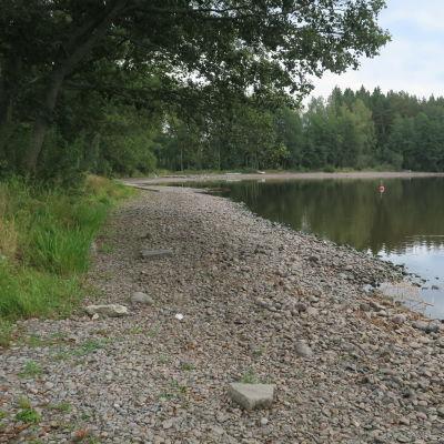 Järven kivikkoinen ranta