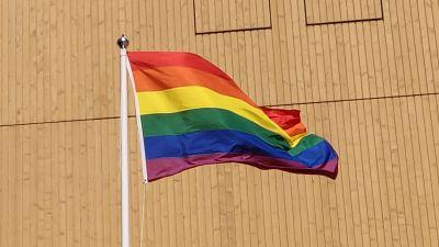 En regnbågsflagga svajar i toppen på en flaggstång utanför biblioteket Ode.