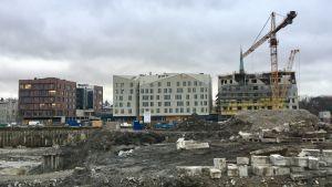 Nya hus som skymmer sikten mot Tallinns Gamla stad.
