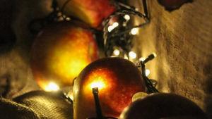 Äpplen, jutesäckstyg och elljusslinga. Stämningsbild.