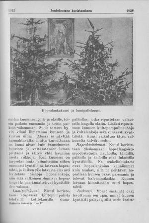 Joulukuusen koristelun ohje