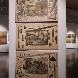 Finsktillverkade planscher visar finländsk förhistoria.