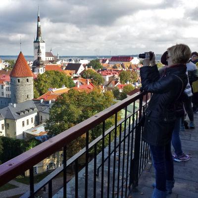 Turisti kuvaa Tallinnaa mäeltä