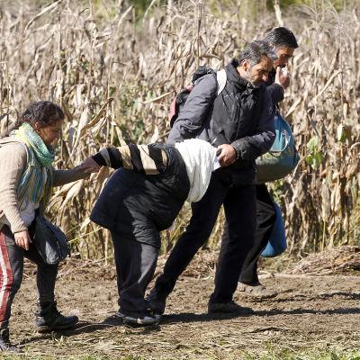 Flyktingar vid Sloveniens gräns.