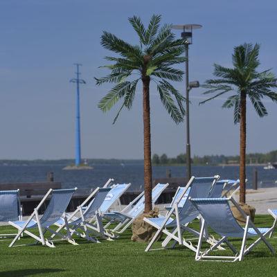 ett terassområde med palmer och blåvitrandiga solstolar på en festival
