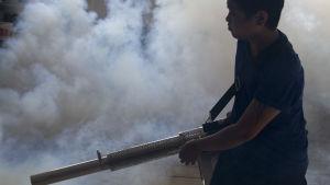 Hälsoarbetare sprider gift mot myggor som sprider zikavirus