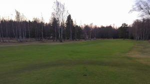 golfviheriö yyterin golf porissa