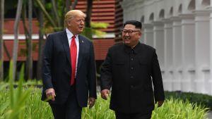 Trump och Kim Jong-Un i Singapore.