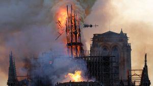 Notre Dame brinner.