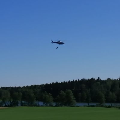En helikopter flyger med vatten över skogen.