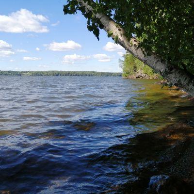 Lojo sjö vid Karkali naturreservat.