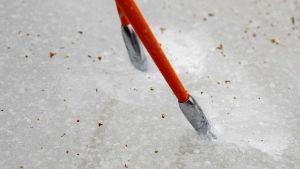 Ispikar som används av långfärdsskridskoåkare.
