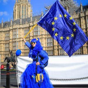 EU-förespråkare viftar med EU-flaggan utanför den brittiska parlamentsbyggnaden i Westminster.