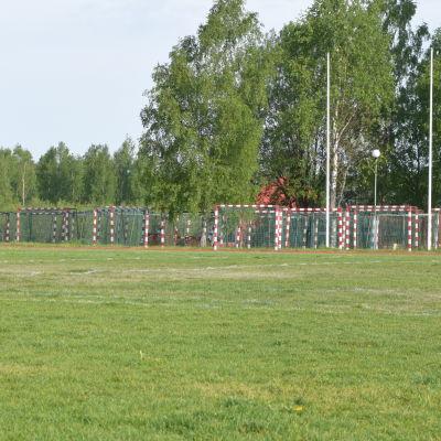 Sjundeå idrottsplan, grönt gräs, många handbollsmål i bakgrunden