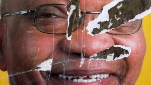 En riven valaffisch av den impopuläre presidenten Jacob Zuma