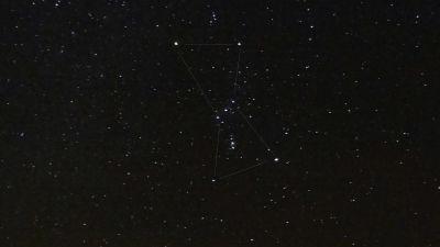 Stjärnbilden Orion.