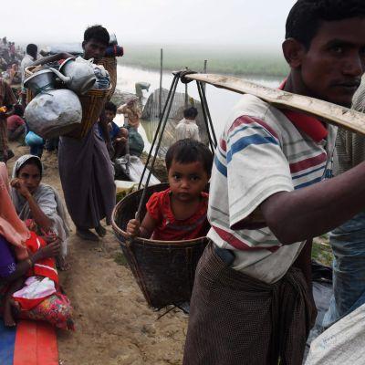 """Rohingyer som flytt från Burma till """"ingenmansland"""" vid Bangladesh gräns"""