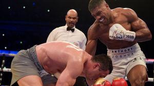 Förlustmatchen mot Anthony Joshua i april 2017 blev Wladimir Klitschkos sista.