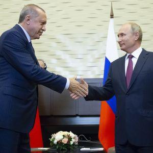 Recep Tayyip Erdogan och Vladimir Putin skakar hand.
