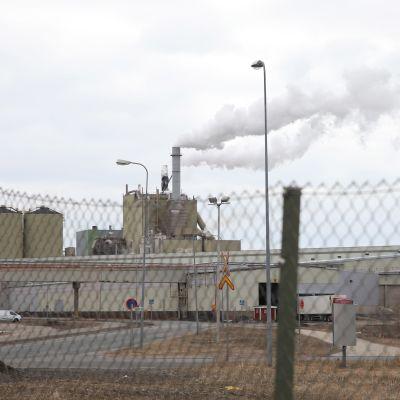 Paksuilla tolpilla tuettu verkkoaita, jonka takaa näkyy Stora Enson Veitsiluodon tehtaan rakennuksia. Sellutehtaan piipuista nousee savua.