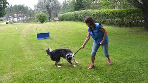 Hund och kvinna leker