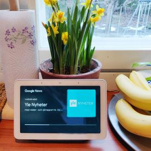 Smarthögtalare med skärm i ett kök. Högtalaren spelar upp Yle Nyheter.