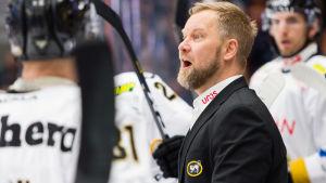 Mikko Manner, Kärpäts tränare
