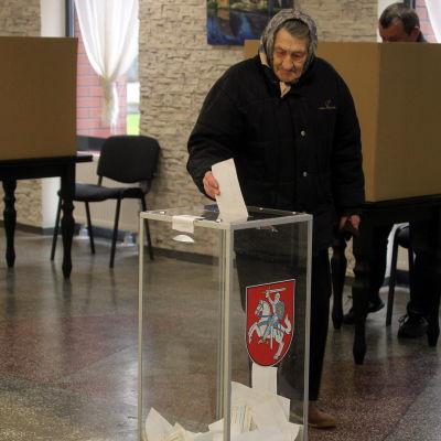 En väljare i Birzai, Litauen i parlamentsvalets andra omgång 23.10.2016