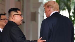 Kim Jong-un håller handen på Donald Trumps arm.