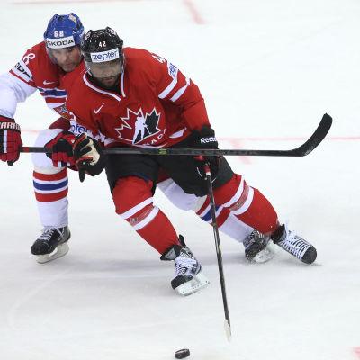 Joel Ward i kamp med Jaromir Jagr i hockey-VM