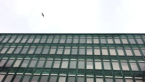Rakennus osoitteessa Lastenlinnankatu 5, Helsinki