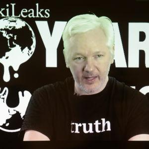 Julian Assange under en videosänd presskonferens i samband med Wikileaks 10-årsjubileum 4.10.2016
