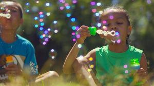 Leikki on luonnon keino kehittää aivoja ja oppia uusia asioita, joita elämässä tarvitaan.