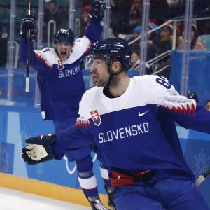 Slovakien-Ryssland.