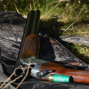 En jägare sträcker sig efter ett hagelgevär som ligger på marken.