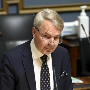 Pekka Haavisto i riksdagen.