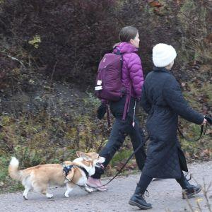 Två kvinnor på promenad med hund.
