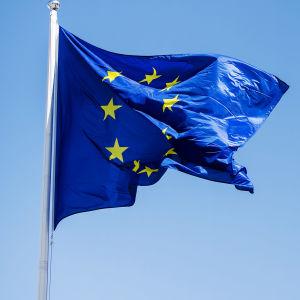 EU:s flagga till vänster, Finlands flagga till höger.