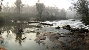 Bibbulmun vandringsspår