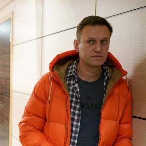 Alexej Navalnyj 2019.