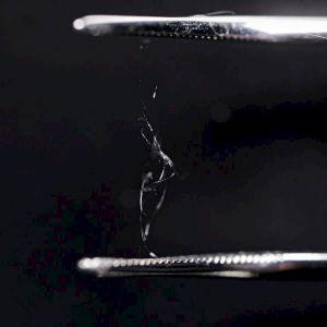 Av silkesproteinet kan man framställa starka fibrer.