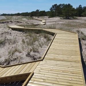 Solen skiner över en sandstrand. I sanden har ett promenadstråk byggts i trä bland dynerna.