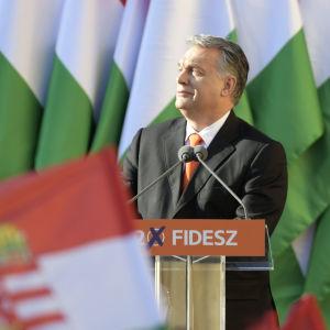 Viktor Orbán omringad av ungerska flaggor.